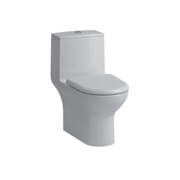One-piece Washdown WC